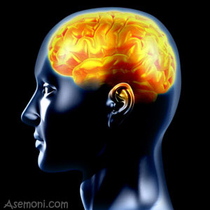 10-interesting-facts-about-brain